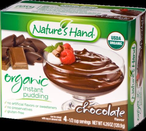 Organic Chocolate Pudding